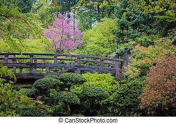 橋, 中に, a, 日本の庭