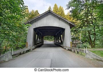 橋, 入り江, 上に, ワシントン, ヒマラヤスギ, カバーされた