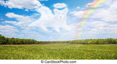 橋, 虹, 渡ること, 上に, 犬