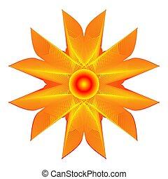 橙, 白色的花儿, 背景