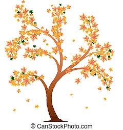 橙, 秋天, 樹
