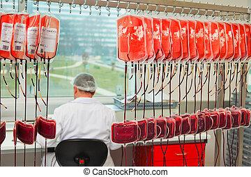 檢查, ......的, 捐贈人, 血液, 在, the, 血液, 實驗室