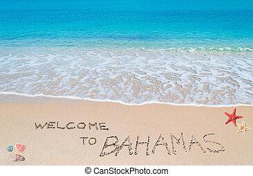 歓迎, へ, バハマ