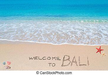 歓迎, へ, バリ