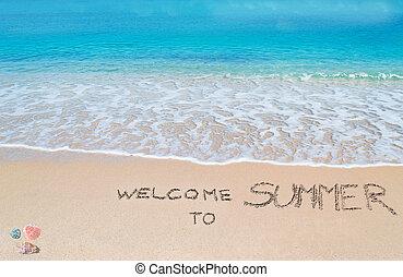 歓迎, へ, 夏, 書かれた, 上に, a, 熱帯 浜