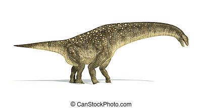 正しい, 切り抜き, 科学的に, representation., 低下, titanosaurus, 恐竜, 側, 白...