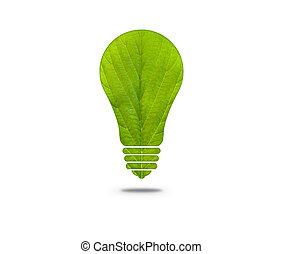 正式の許可, 葉, 電球