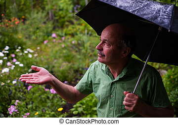 歩くこと, 傘, 庭, rain., の間, 人