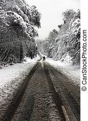 歩くこと, 冬, 雪が覆われる, 前方へ, 道, 人