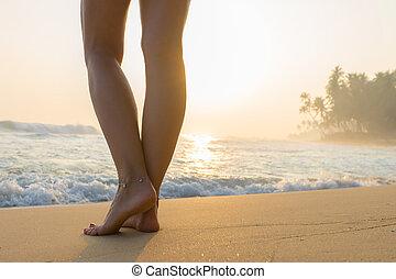 歩くこと, 女, 旅行, -, sunrise., 去ること, 砂ビーチ, 足跡
