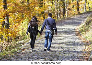 歩くこと, 恋人, 公園, 若い, 秋の森林