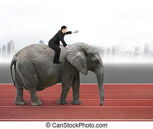 歩くこと, 指を 指すこと, 象, 乗馬, ジェスチャー, 人