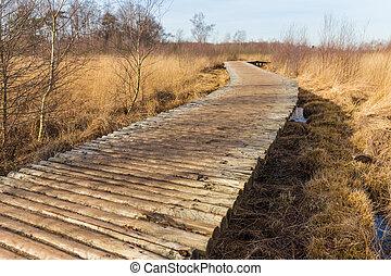 歩くこと, 自然, 上げられる, によって, 道, 予備