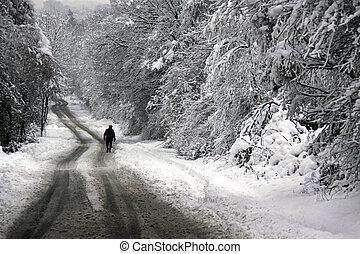 歩くこと, 雪, 下方に, カバーされた, 道, 人