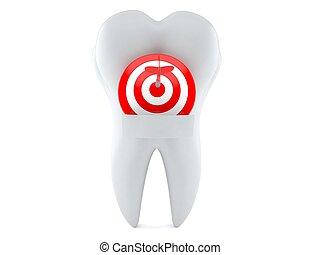 歯, 中心部