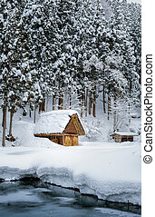 歴史的, 村, の, shirakawa-go, 日本, 中に, 雪が多い, day.