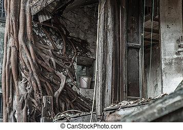 残物, roots., 浮浪者, 家, 木, 古代, ドア, 骨董品, 捨てられた