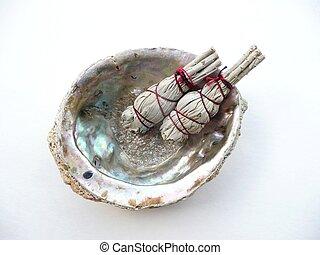 殻, セージ, 儀式