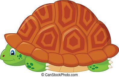 殼, 隱藏, 海龜, 他的, 卡通