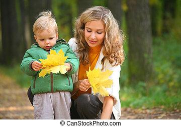 母, 子と一緒に, 中に, 秋, 木