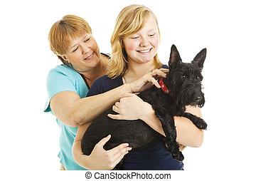 母, 犬, 娘