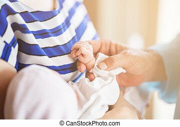 母, hands., 家族, 赤ん坊, 父, 新生, 保有物, kid.
