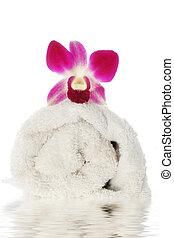 毛巾, 兰花