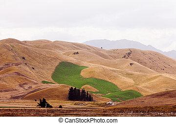 気候, 潅漑された, 丘, フィールド, 緑, 干ばつ, 変化しなさい