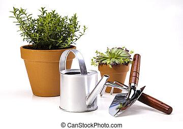 水まき, 庭, 缶