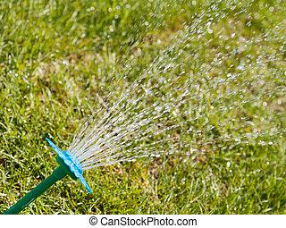 水スプリンクラー, 上に, 緑の草
