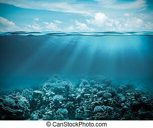 水下, 背景, 自然, 深, 海洋, 海, 或者