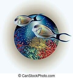 水中, カード, surgeon-fish
