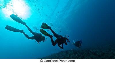 水中, グループ, スキューバ ダイバー