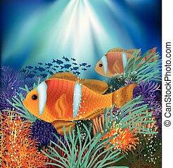 水中, ベクトル, カード, イラスト, clownfish