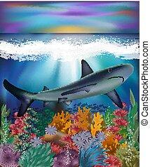 水中, ベクトル, 背景, イラスト, サメ