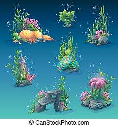 水中, 海草, コレクション