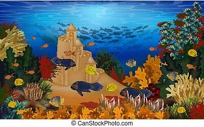 水中, fish, イラスト, トロピカル, 砂, ベクトル, 背景, 城