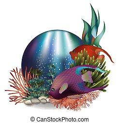 水中, fish, 挨拶, イラスト, トロピカル, ベクトル, カード