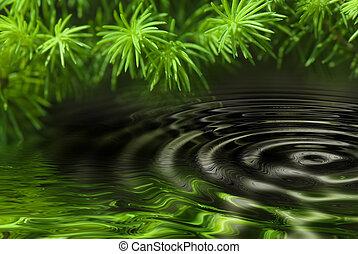 水反射, 森林