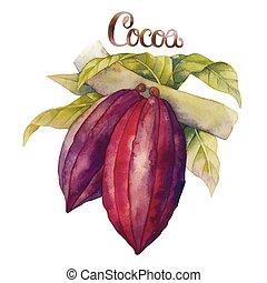 水彩画, ココア, フルーツ