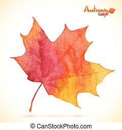 水彩画, ベクトル, 葉, 赤いカエデ