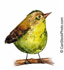 水彩画, 図画, 鳥