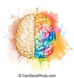 水彩画, 脳