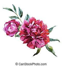 水彩画, 花, すてきである
