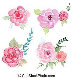 水彩画, 花, セット, ベクトル