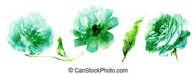 水彩画, 花, leafs