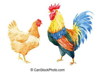 水彩画, 雄ん鶏, おんどり