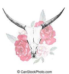 水彩画, 頭骨, 雄牛