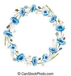 水彩画, cornflower, 花輪