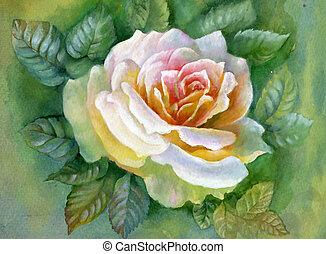 水彩画, flower-rose